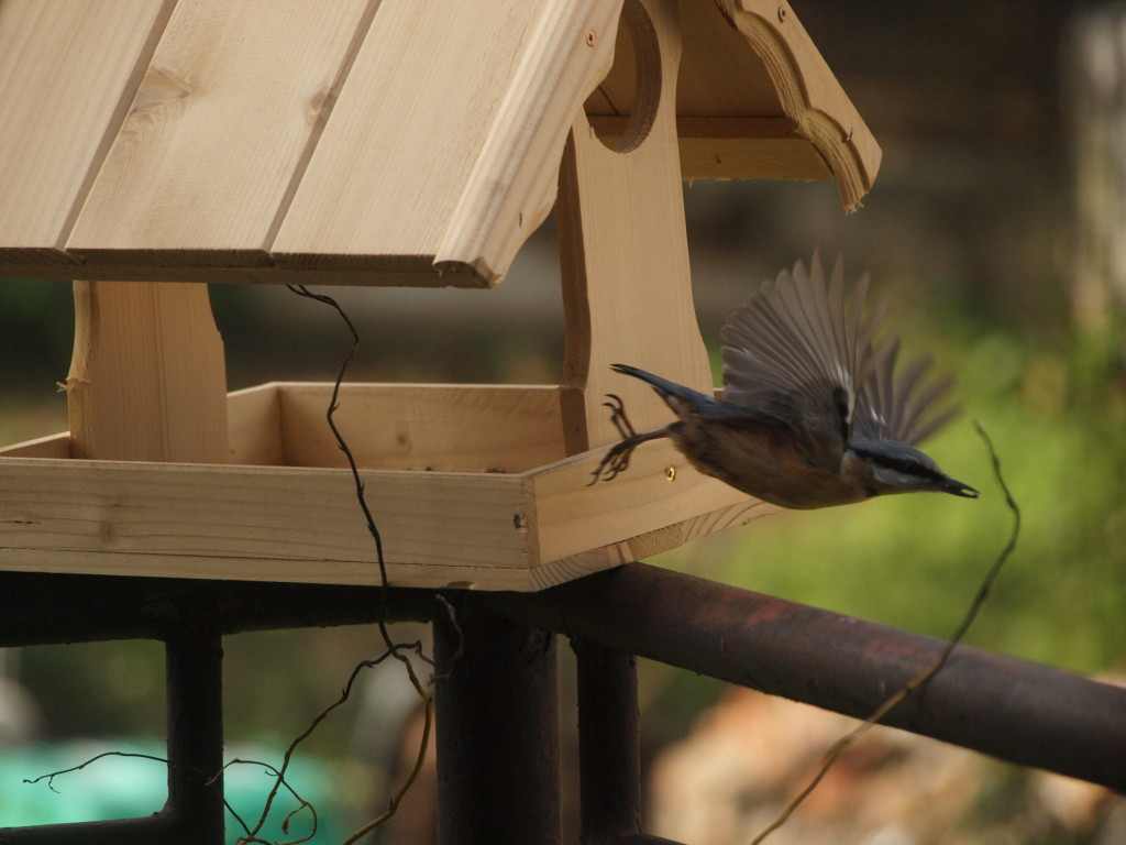 Krmítko pro ptactvo