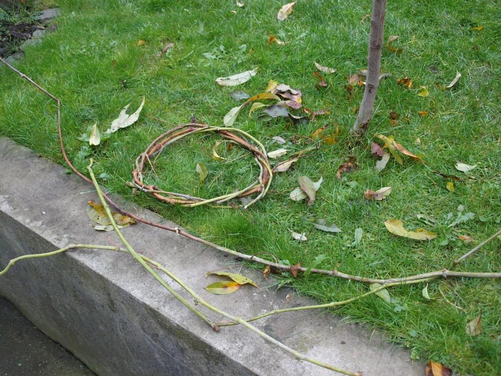 Pletení - úplný základ z révy
