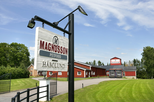 Firma magnusson