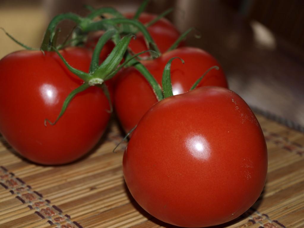 Rajčata do kečupu