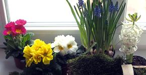 Jak vyrobit nenáročnou jarní dekoraci