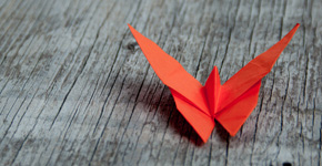 Origami nhled