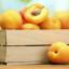 Zpracování ovoce a zeleniny