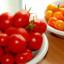 Odrůdy a pěstování rajčat