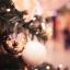 Symbolika Vánoc: Co možná neznáte