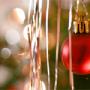 Vánoční dekorace: Doplňky a květiny