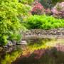 Jak založit zahradu dle posledních trendů