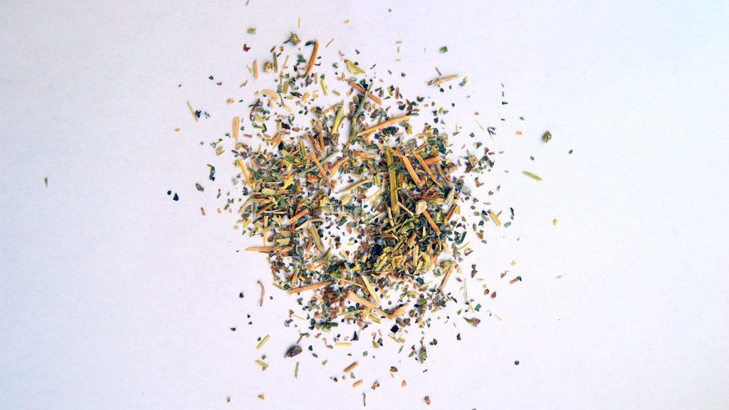 Kotvičník zemní, Tribulus terrestris