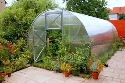 Bylinky ve skleníku