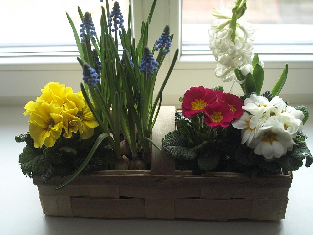 Jarní dekorace 1