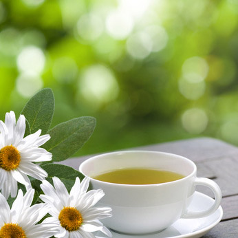 Zelený čaj hrneček