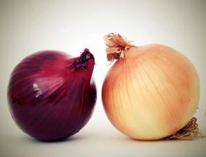 Dva druhy cibule