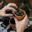 3 rady, jak minimalizovat riziko úrazu při práci na zahradě