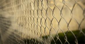 Jak na to: Vybíráme a montujeme pletivo na plot