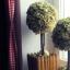 Vyrobte si s námi stromečky ze sušené hortenzie