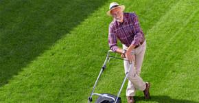 Jak vypěstovat trávník